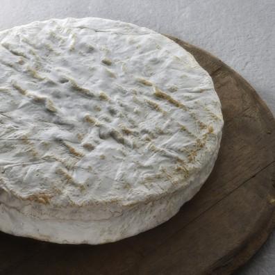 brie-de-melun-fromage