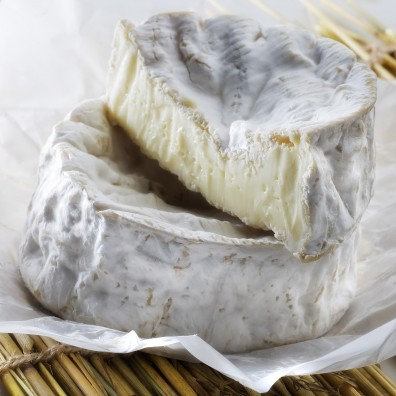 camembert-fromage