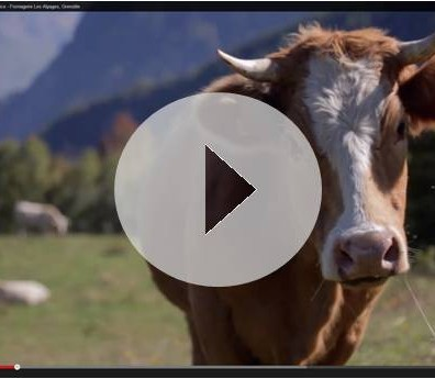 rhone-alpes-tourisme-fromagerie-les-alpages-grenoble