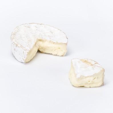 camembert (4)