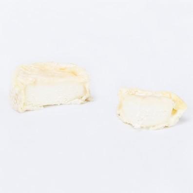 chevre-d-ardeche (2)