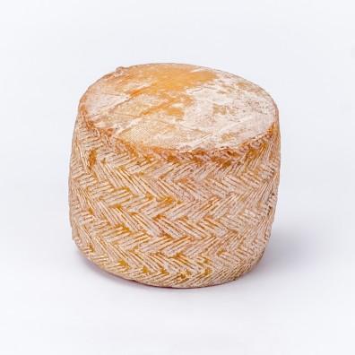 brebis-des-pyrennees