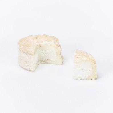 chevre-mont-saint-martin